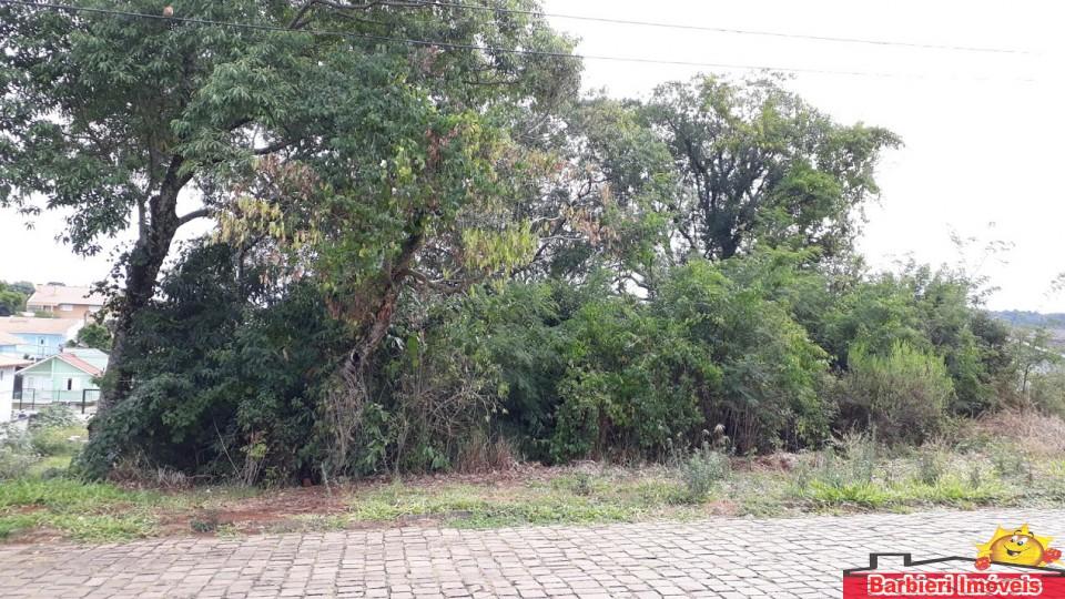 Dois terrenos